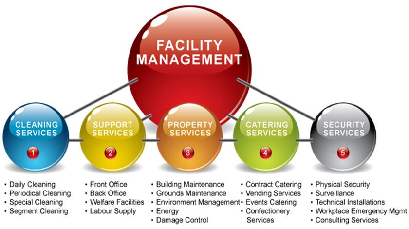 PEOPLE NAUKRI & CONSULTANCY | Job Consultancy | Services